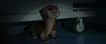 Savage Otterton 03
