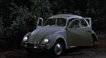 The-Love-Bug-40