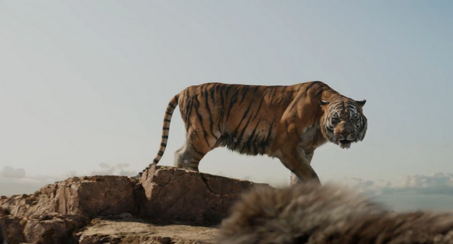 File:Shere Khan Attention.png