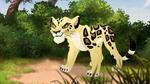 The-golden-zebra (65)