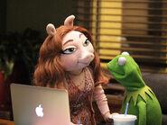 Denise and Kermit laptop