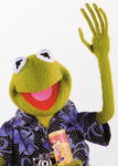 Kermit-disneypark