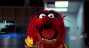 Muppets Most Wanted Teaser 01
