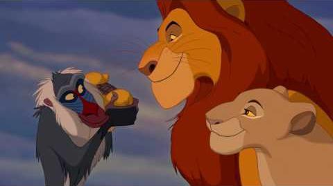 O Rei Leão - Ciclo sem Fim