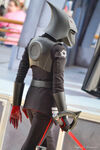 Seventh Sister at Disney Parks 22