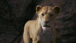 The Lion King (2019 film) Sarabi We