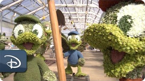 Behind the Scenes- Detrás de escenas International Flower & Garden Topiaries
