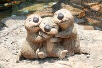 Otters DisneySea