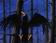 Raven as raven