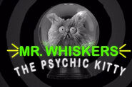 Whiskers psychic