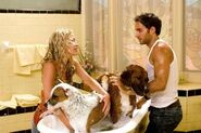 Beverly-Hills-Chihuahua-Movie-Ph-4
