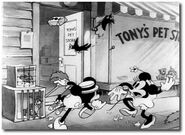 19512