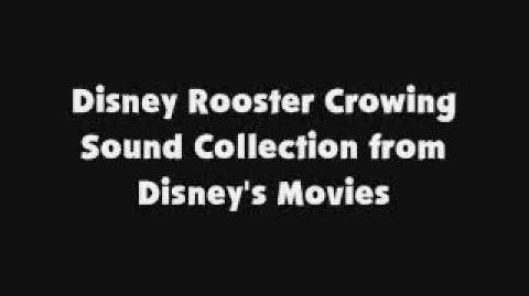 Disney Rooster Crowing Sound Collection from Disney's Movies