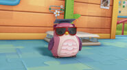 Professor hootsburg red sunglasses