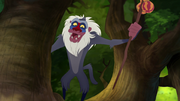Rafiki laughs at Kion and Bunga