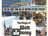 The Magic of Walt Disney World