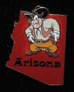 Pete arizona character pin