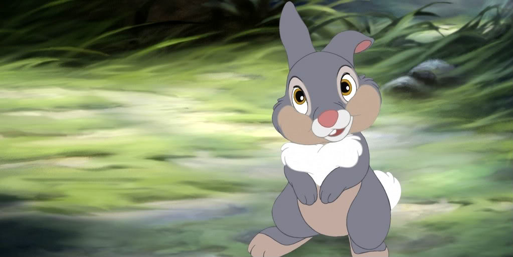 Thumper | Disney Wiki | FANDOM powered by Wikia