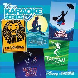 Disneys karaoke series disney on broadway