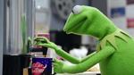 TheMuppets-S01E08-KermitCoffee