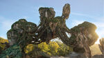 Pandora Mountain