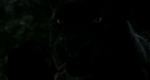The Jungle Book 2016 (film) 06