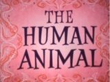 You... The Human Animal