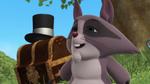 Raccoon Winnie the Pooh