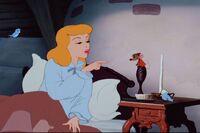 Cinderella051