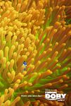 Finding-dory-poster-1