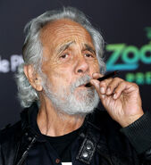 Tommy Chong Zootopia premiere