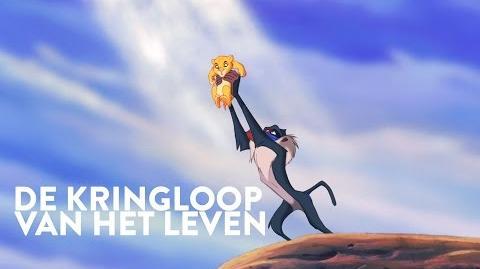 De Leeuwenkoning Liedje De Kringloop van het Leven Disney BE