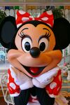 Minnie Mouse Photo2