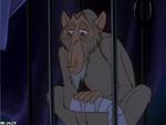 Poor Monkey