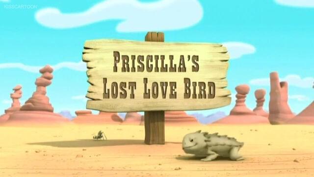 File:Priscilla's Lost Love Bird.jpg