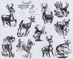 Bambi Kahl4