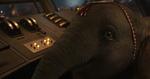 Dumbo2019 544
