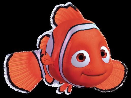 Finding Nemo Disney Walt Disney Movies Fish Animation: FANDOM Powered By Wikia