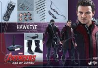 Hawkeye AOU Hot Toys 13