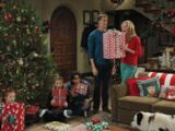 Stan Steals Christmas