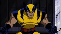 Wolverine EMH