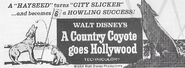 A Country Coyote Goes Hollywood print ad