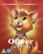 Oliver & Company O-Ring BD