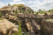 Seven Dwarfs Mine Train 13