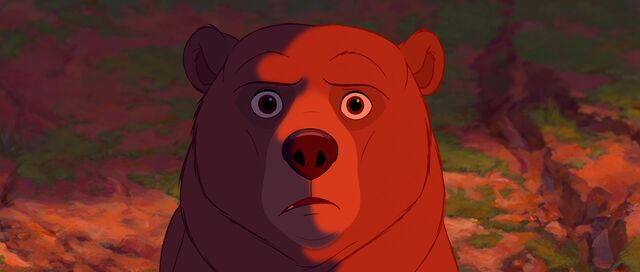 File:Bear 47.jpg