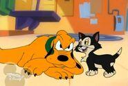 Pluto vs Figaro