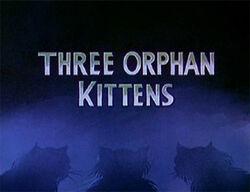 Ss-threeorphankittens