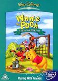 Winnie the Pooh Playtime DVD