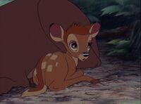 Bambi-disneyscreencaps.com-422