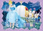 Cinderella pr